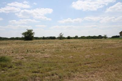 Wills Point Residential Lots & Land For Sale: 1033 Canyon Lake Road