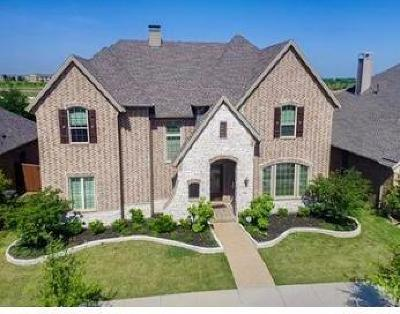 Lewisville Single Family Home For Sale: 700 Four Stones Boulevard