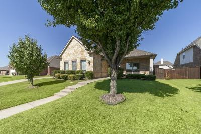 Mesquite Single Family Home For Sale: 5040 Harrier Drive