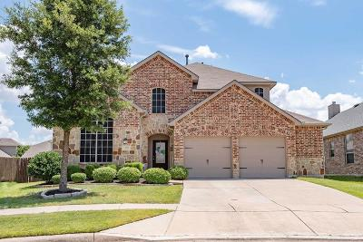 Little Elm Single Family Home For Sale: 205 Willet Court