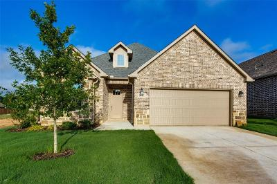 Denison Single Family Home For Sale: 3817 Iron Ore Drive