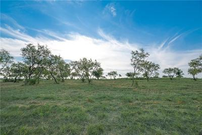 Aledo Residential Lots & Land For Sale: 113 Overlook Drive
