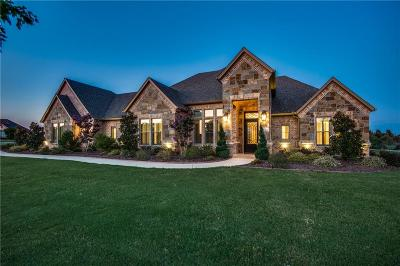 Fort Worth Single Family Home For Sale: 13032 Willow Crossing Drive