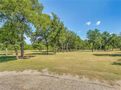 Springtown Residential Lots & Land For Sale: 126 Maggie Lee Court