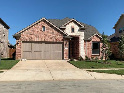 Lewisville Single Family Home For Sale: 1005 W Villas