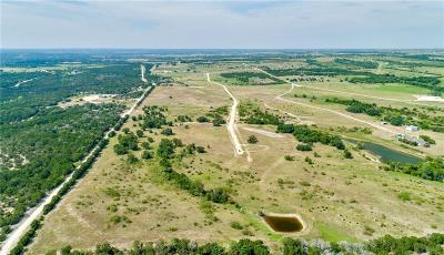 Granbury Farm & Ranch For Sale: 8900 Massey Road
