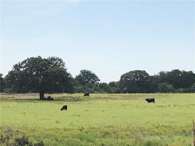 Wise County Farm & Ranch For Sale: Old Decatur Road