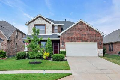 Little Elm Single Family Home For Sale: 1013 Lake Hollow Drive