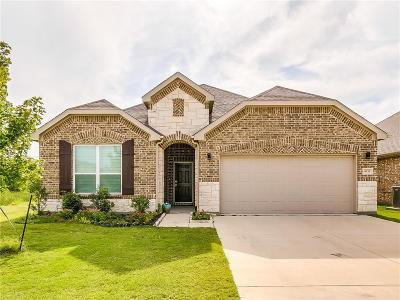 Benbrook, Fort Worth, White Settlement Single Family Home For Sale: 4933 Meadow Falls Drive