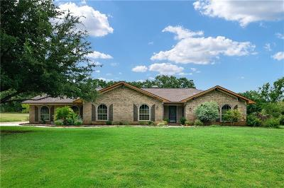 Denton County Single Family Home For Sale: 100 Valley View Trail