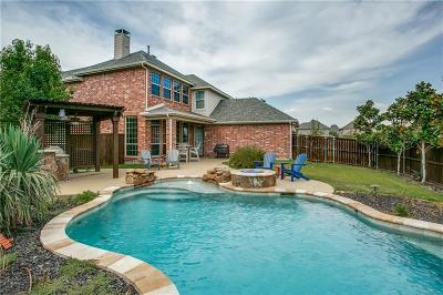 Allen Single Family Home For Sale: 2253 Big Valley Circle