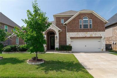 Little Elm Single Family Home For Sale: 2516 Playa Del Mar Drive