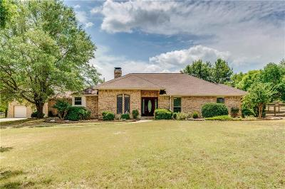 Collin County Single Family Home For Sale: 1161 Farmstead Street