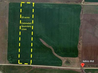 Whitewright Farm & Ranch For Sale: Tbd Milo Road