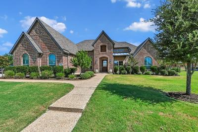 Prosper Single Family Home For Sale: 2231 Cripple Creek Drive