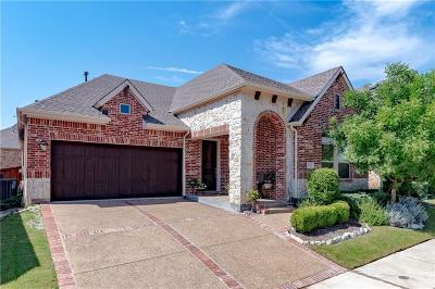 Lewisville Single Family Home For Sale: 2512 Lady Amide Lane