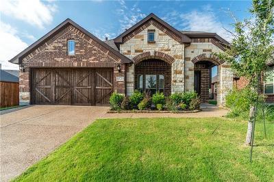 Aubrey Single Family Home For Sale: 1520 Bull Street