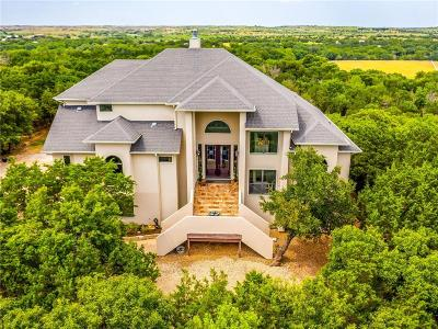 Parker County Single Family Home For Sale: 226 Stone Mountain Road