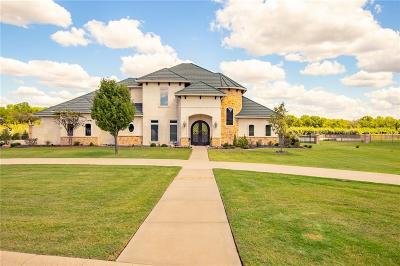 Parker County Single Family Home For Sale: 138 The Lakes Drive