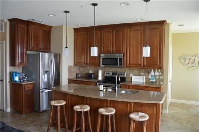 Parker County, Tarrant County, Hood County, Wise County Condo Active Option Contract: 401 E Pearl Street #2103