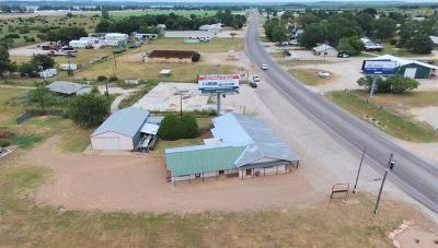 Palo Pinto County Commercial For Sale: 309 Fm Road 2353