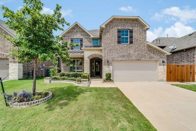 Little Elm Single Family Home For Sale: 740 Sundrop Drive