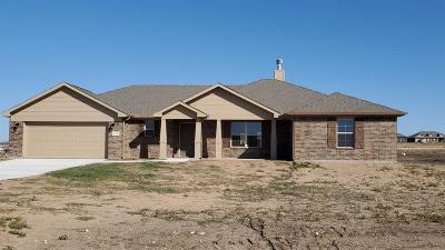 Wise County Single Family Home For Sale: 122 Brook Lane
