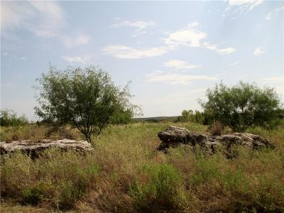 Possum Kingdom Lake Residential Lots & Land For Sale: Lot 31 S Glen Abbey Drive