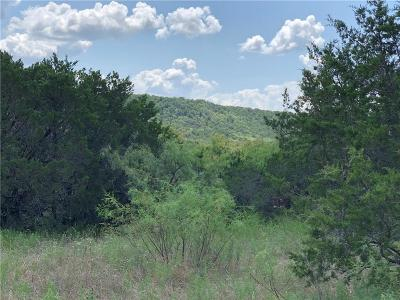 Palo Pinto County Farm & Ranch For Sale: Fm 919