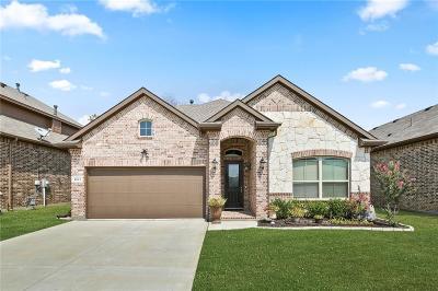 Denton County Single Family Home For Sale: 3905 Cuddy Drive