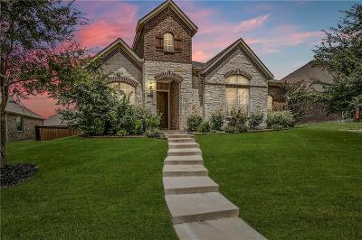 Allen Single Family Home For Sale: 1042 Enchanted Rock Drive
