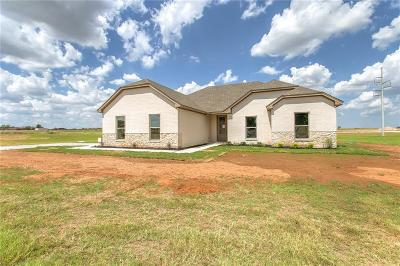 Parker County Single Family Home For Sale: 1201 Young Bend Road