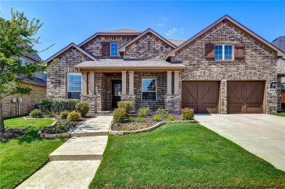 Denton County Single Family Home For Sale: 6208 Prairie Brush Trail