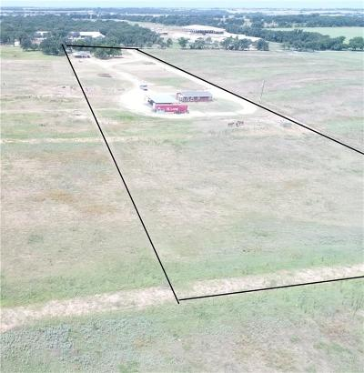 Erath County Single Family Home For Sale: 750 County Road 423