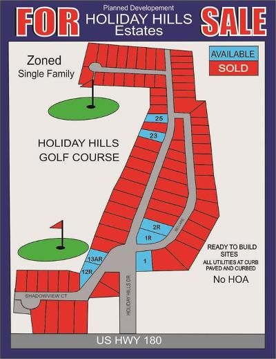 Parker County Residential Lots & Land For Sale: Lot 1r Holiday Hills Drive