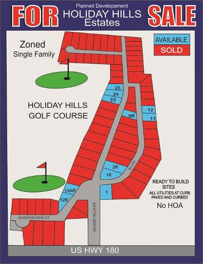 Parker County Residential Lots & Land For Sale: Lot 9r Holiday Hills Drive