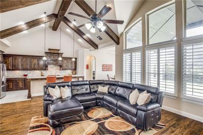 Frisco Single Family Home Active Contingent: 13119 Dolomite Drive
