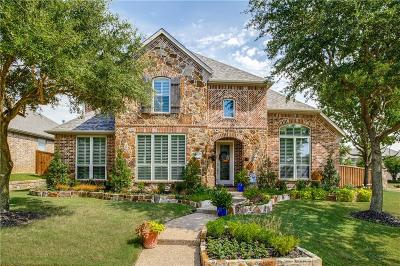 Allen Single Family Home For Sale: 1802 Palo Pinto Drive