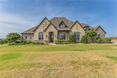 Fort Worth Single Family Home For Sale: 12501 Bella Amore Drive