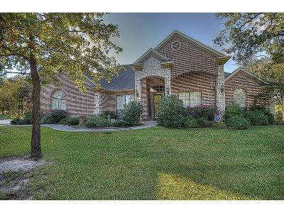 Azle Single Family Home For Sale: 212 S Natural Springs Lane