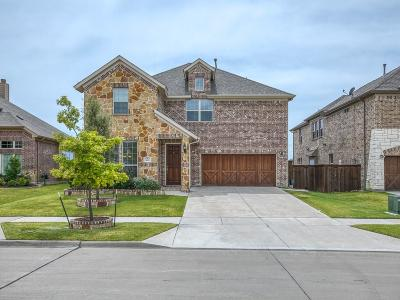 Denton County Single Family Home For Sale: 5611 Lightfoot Lane