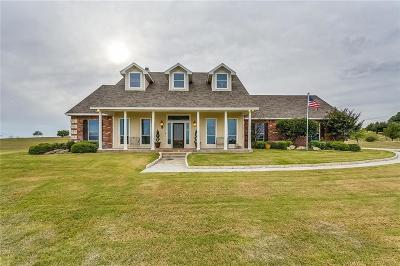 Parker County Single Family Home For Sale: 281 Trail Ridge