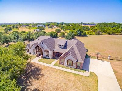 Parker County Single Family Home For Sale: 207 Rim Rock Lane