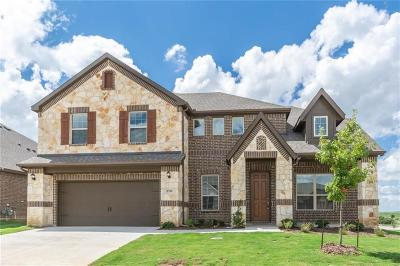 Fort Worth Single Family Home For Sale: 8700 Cloudyway Drive