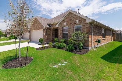 Little Elm Single Family Home For Sale: 821 Bird Creek Drive