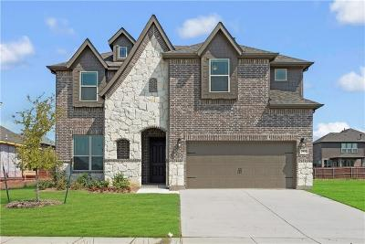 Grand Prairie Single Family Home For Sale: 2932 Paige Place
