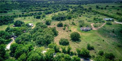 Parker County Farm & Ranch For Sale: 828 Dill Road