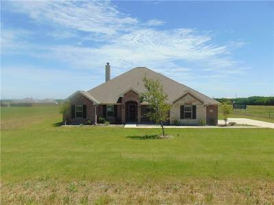 Nevada Single Family Home For Sale: 8404 County Road 592