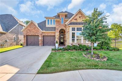 Allen Single Family Home For Sale: 1040 Mondamin Drive