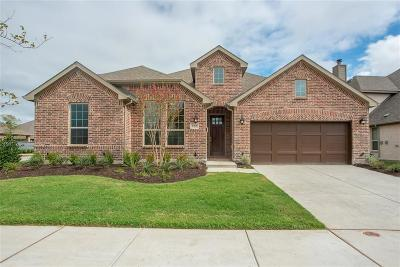 Little Elm Single Family Home For Sale: 737 Sandbox Drive